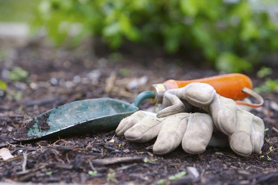 Gardening Wexford