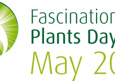 fascination of plants day 18 may 2015