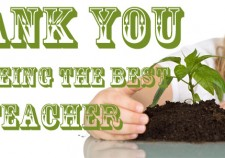 Thank You Teacher Gifts Wexford