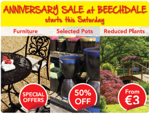 August Bank Holiday Sales Wexford 2015