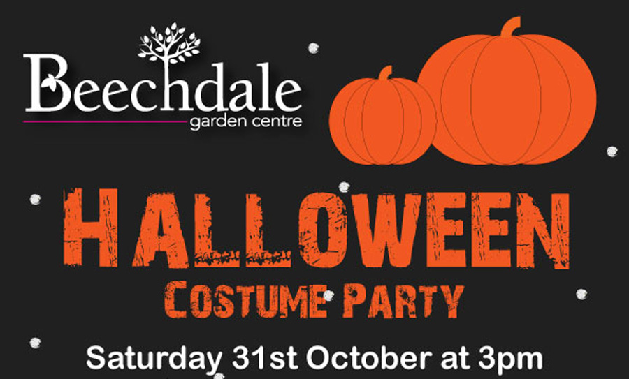 Kids Halloween fancy dress Costume Partys Wexford