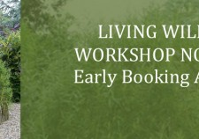 Living Willow Workshops