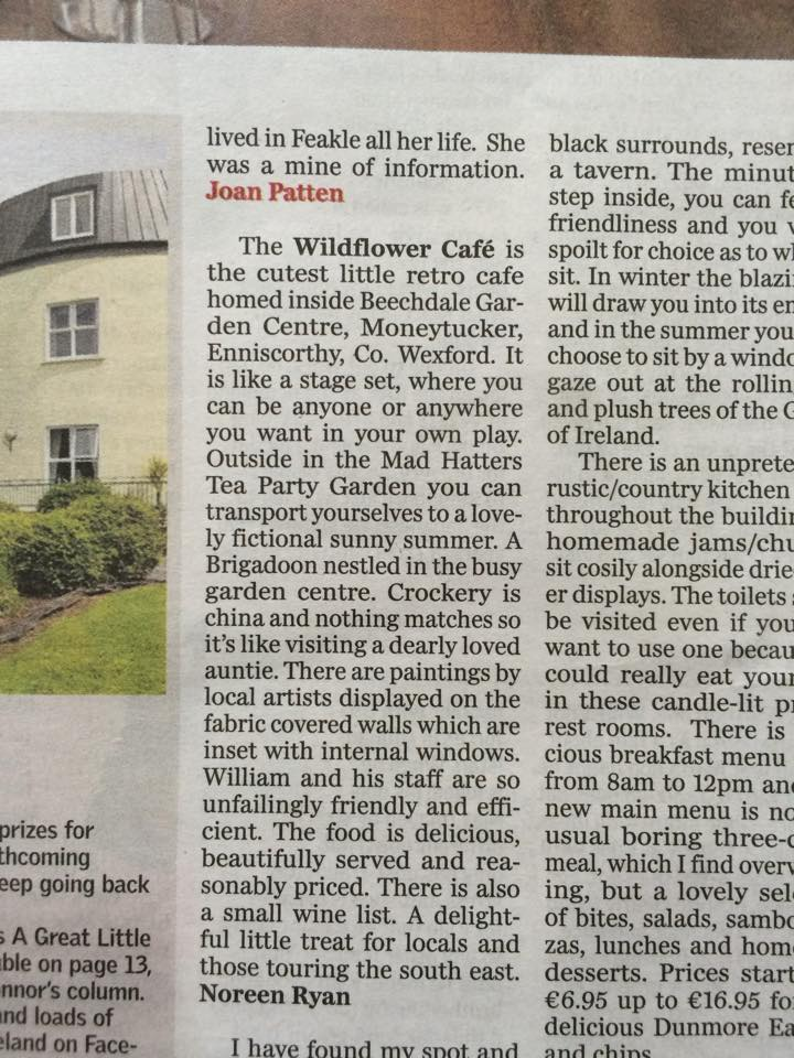 wildflower cafe irish Indo