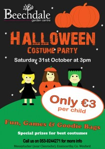 Halloween Fancy Dress Party for Kids at Beechdale Wexford