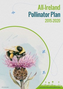 Irish Pollinator Plan