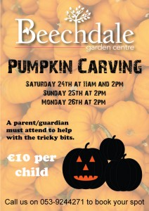 Pumpkin Carving Wexford