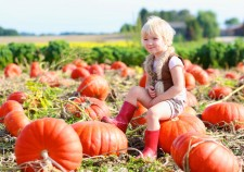 whats on at Beechdale this Autumn