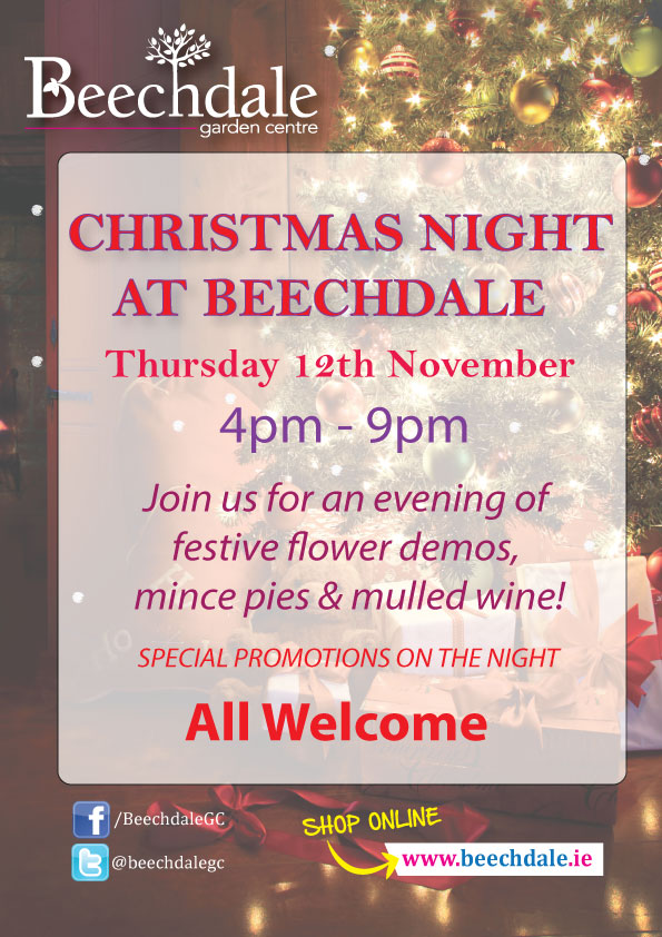 Christmas night at Beechdale Wexford