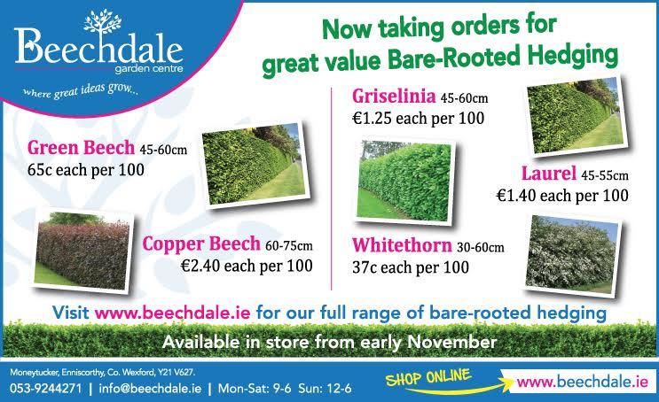 bareroot-hedging-2015 wexford