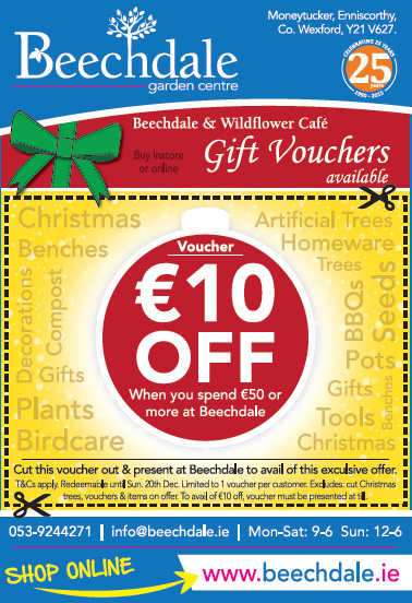 Spoecial offers Christmas Wexford