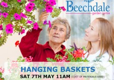 learn how to grow hanging baskets free gardening class at Beechdale Garden Centre Wexford