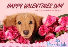 Happy valetnines Day from Beechdale Garden Centre Wexford