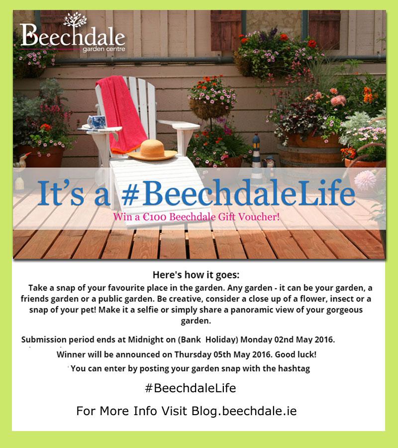 Beechdale_Life-Comp_SM_Web