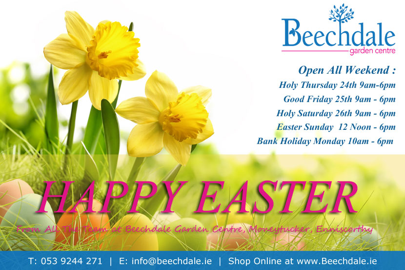 Happy Easter from Beechdale Garden Centre