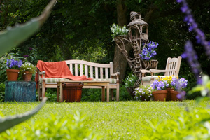 Garden Design Services At Beechdale